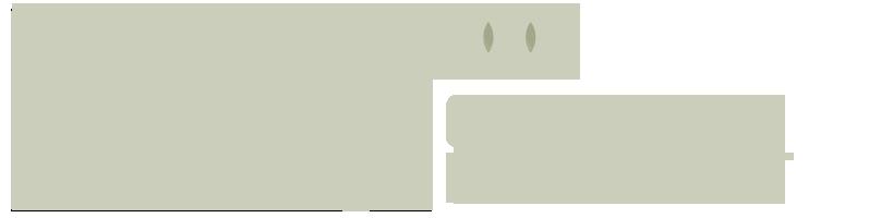 bps-world-logo-monotone