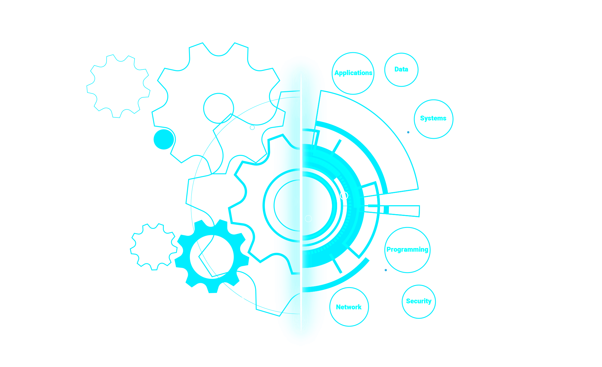 website2020II-infographic (1)
